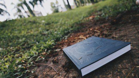 book-close-up-daylight-920029.jpg