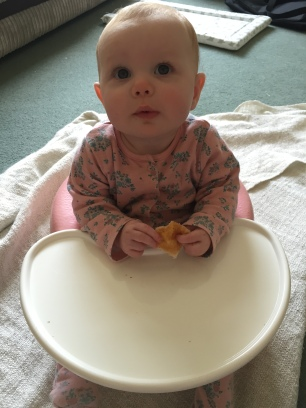Baby eating a square of toast while sat in a baby seat